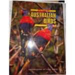 Focus on Australian Birds