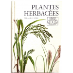 Plantes herbacées, atlas illustré