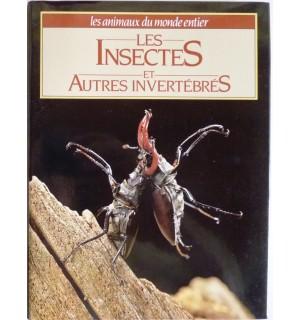 Les Insectes et autres invertébrés