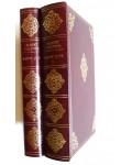 Saint-Just et la force des choses (tomes 1 et 2)